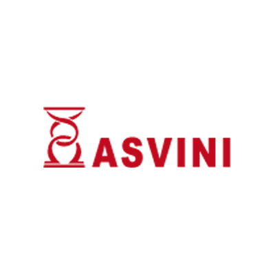 logo-asvini